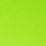 couverture_vert_acide_carnet